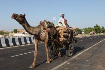 Agra nach Jaipur